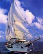 Legacy tall ship